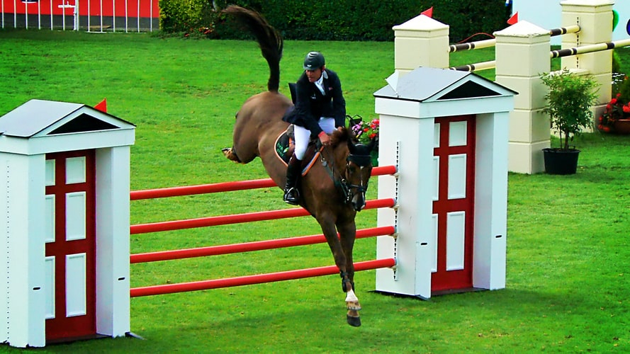 6 Tips to Successfully Prepare for A Horse Show
