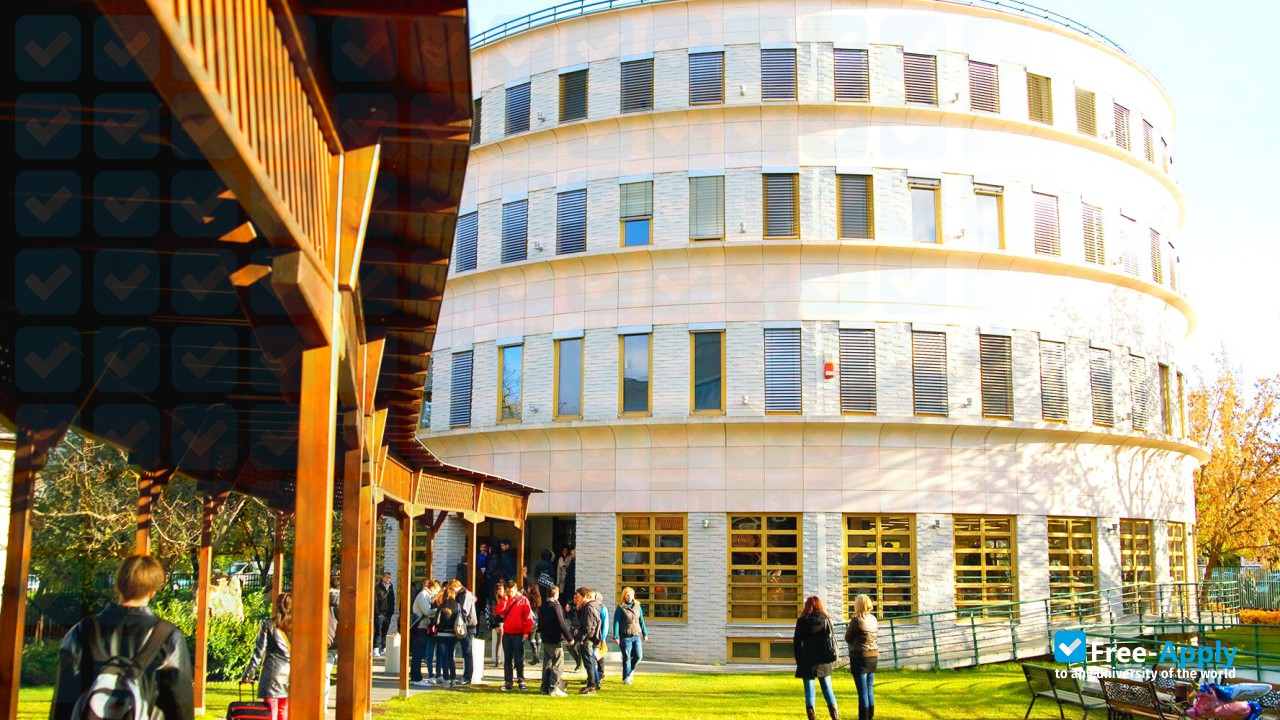 Art Programs for Foreigners at Budapest Metropolitan University